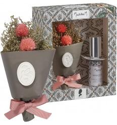 Geschenkset Trockenblumen + Duftspray Parfum Marquise